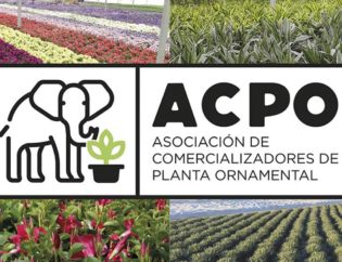 apco-association-orvifrusa