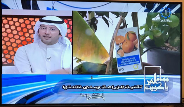 frutales-orvifrusa-kuwait-television