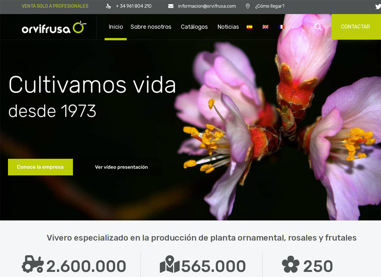 nueva-web-orvifrusa-2021