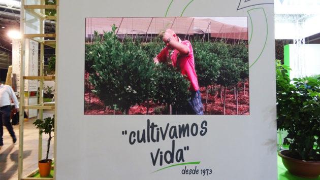 orvifrusa-iberflora2021