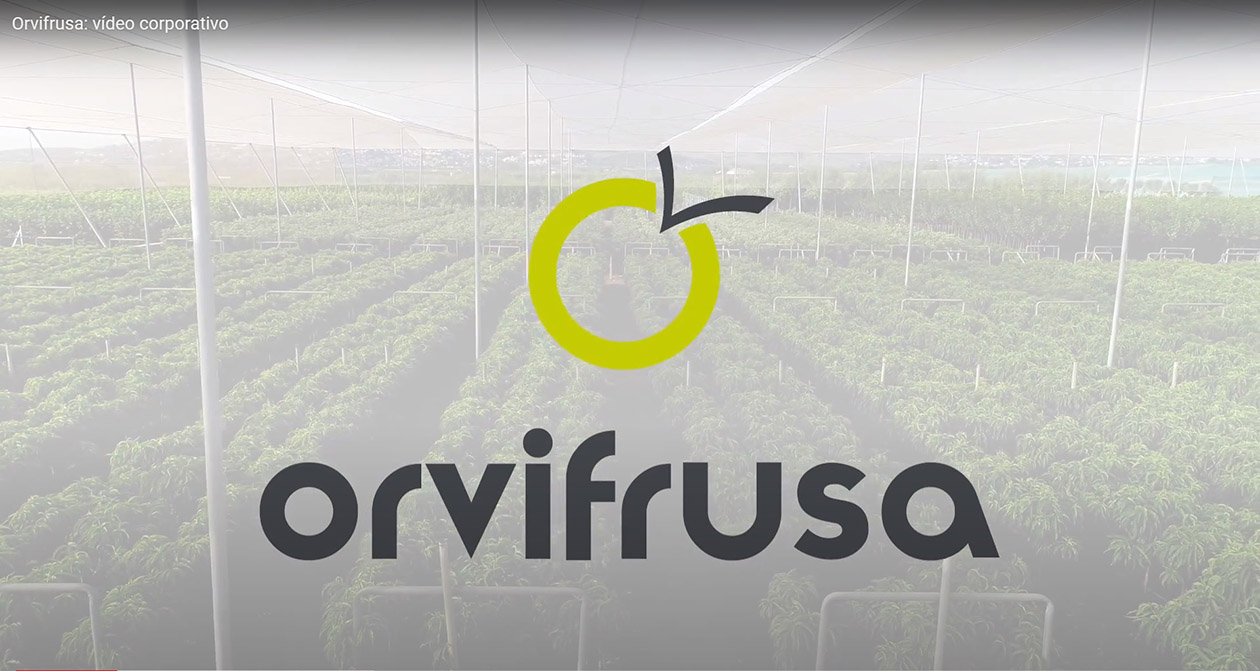 corporate-video-orvifrusa