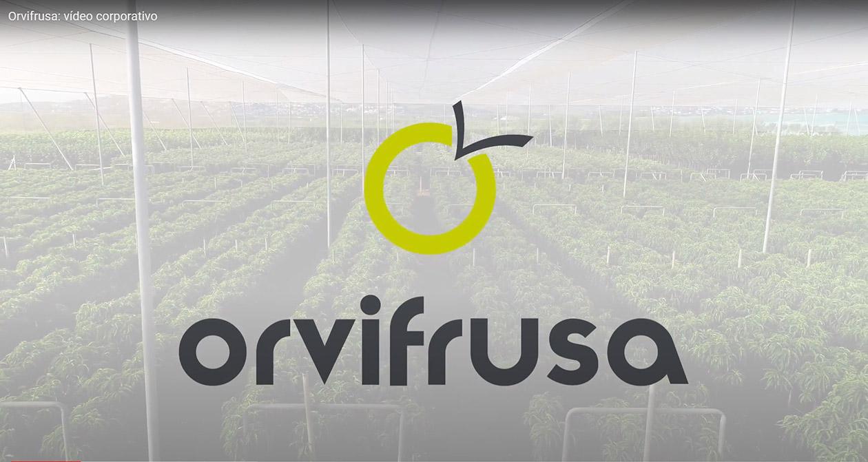 video-corporativo-orvifrusa